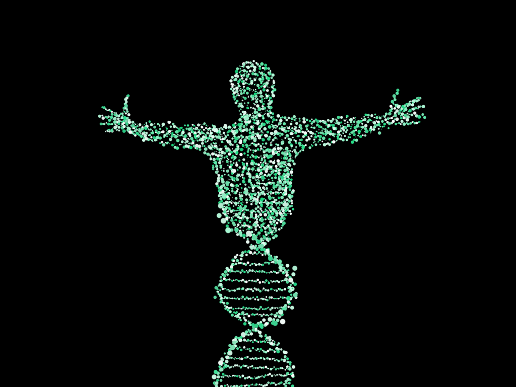 DNA forming human